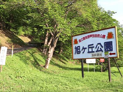 旭ヶ丘公園の写真